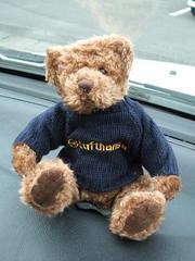 Lh_bear2