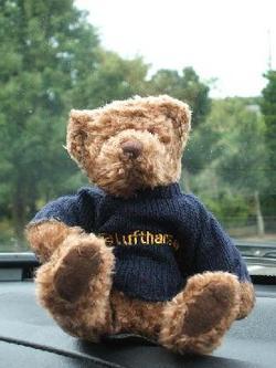 Lh_bear